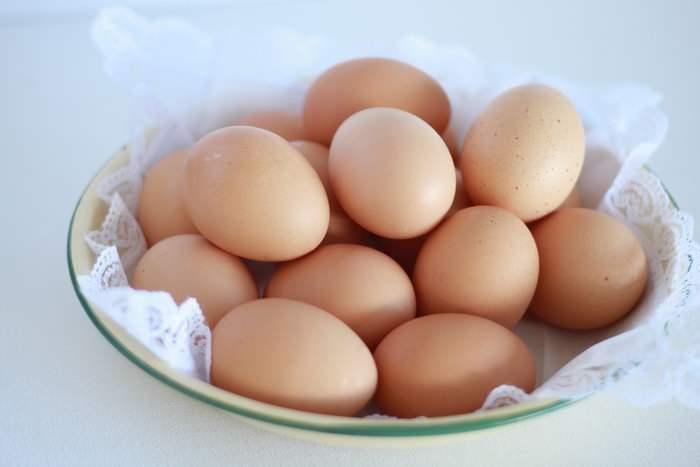 世界已有42个国家和地区在鸡蛋中检出氟虫腈